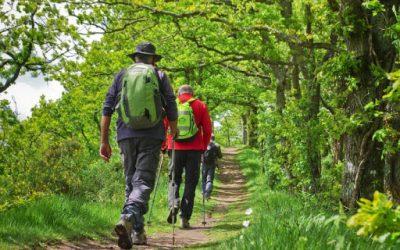 Quels sont les indispensables pour partir en randonnée ?